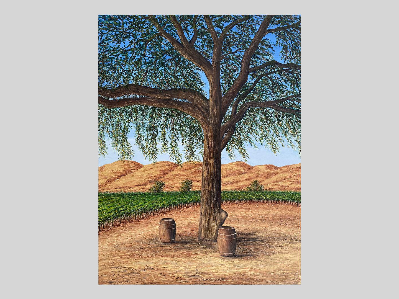california-oak