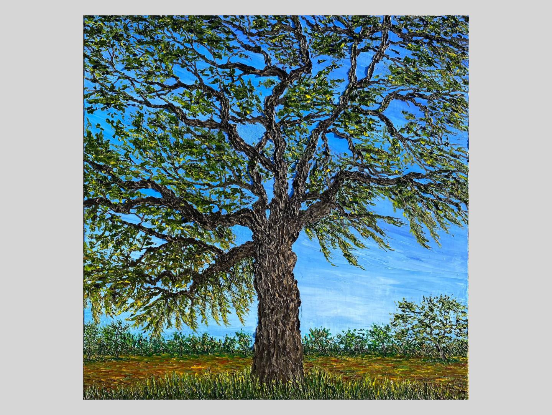 Majstic Oak